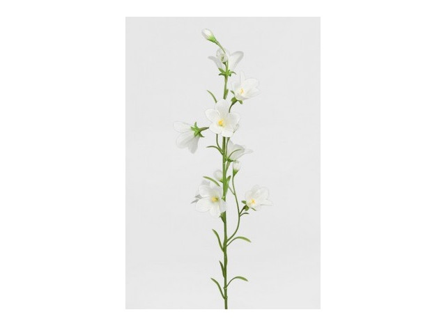 Klokkeblomst hvid 65cm