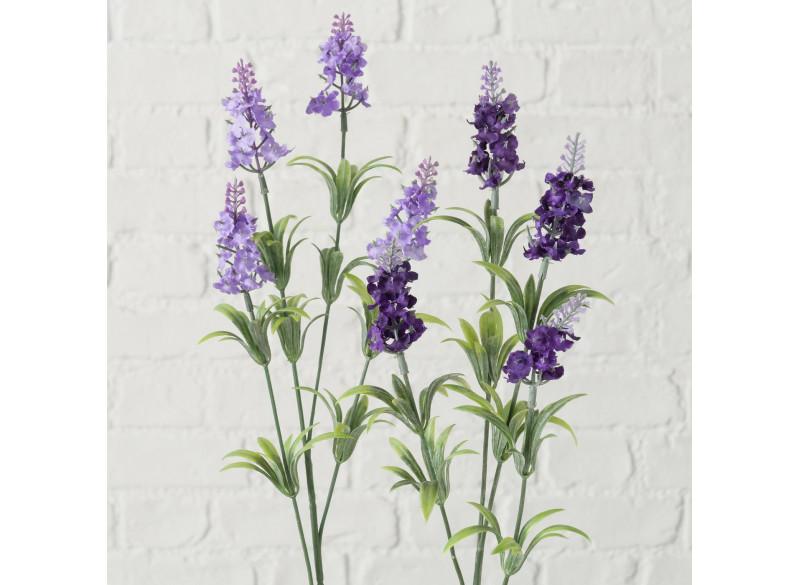 Lavendel Gren Violet