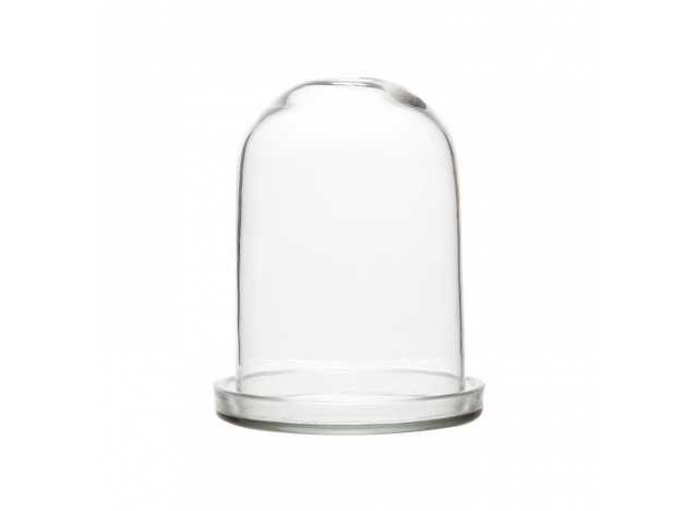 Bell Jar Glass w glass bottom