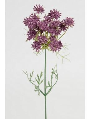 Trachellium 45cm, lilla