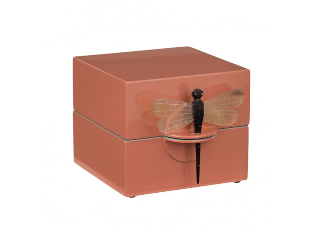 Box w dragonfly Earth Small