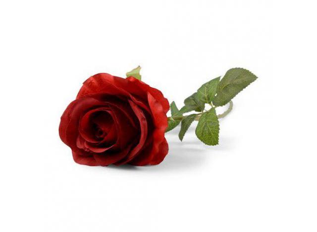 Rose rød 57cm