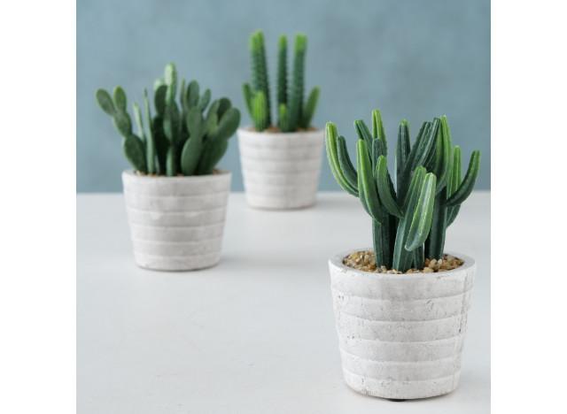 Kaktus i krukke H17cm