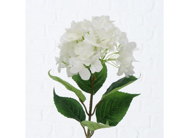 Hortensia Hvide 84cm