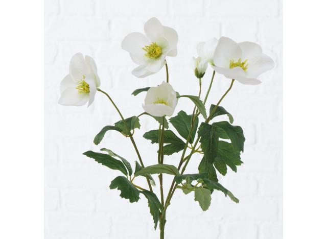 Hvide Anemoner H38cm