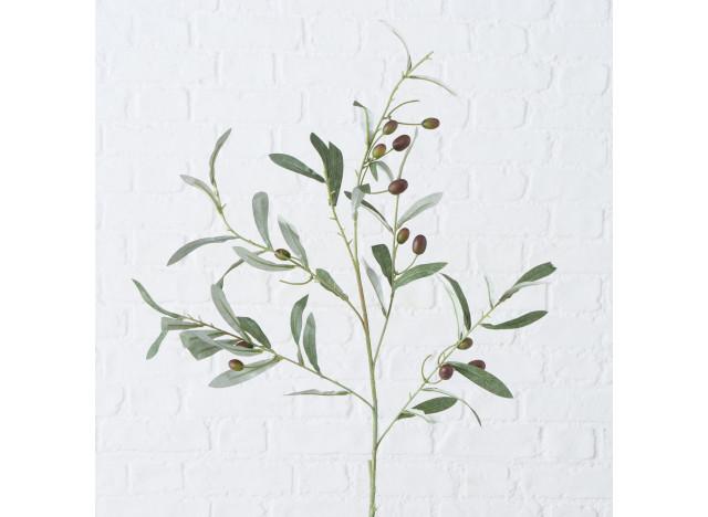 Olivengren H77cm