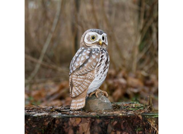 DecoBird Little Owl